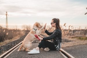 check-femme-chien